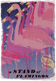 Lovely birds and animal posters from Woop Studios discovered via Design Sponge