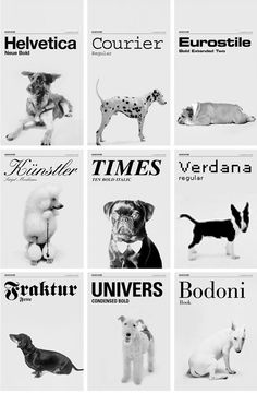 dogs as fonts by Grafisches Buro