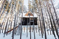 Treehouse retreat