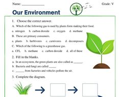 Worksheet For Class 2, Science Worksheets, Our Environment, Greenhouse Gases, Teaching Resources, Student, Google Search