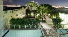 rooftop gardens   Rooftop Garden :D