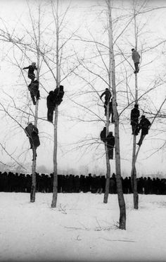 theelka:         Mikola Gnisyuk, People in Trees (The Rooks Have Arrived), 1964