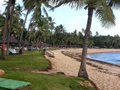 Praia do Forte Bahia Brasil Eco Resort   Foto - Google Fotos