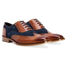 NAVY & BROWN OXFORD BROGUE SHOE - Google Search