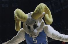 UNC goat demon