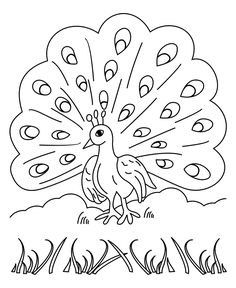 Free Printable Peacock Coloring Pages
