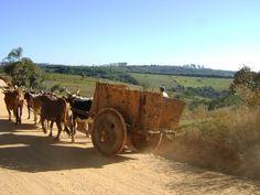 carro de bois | Carro de bois na Serra de Camapuã (Entre Rios de Minas/MG).