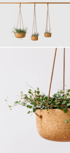 Vintage inspired, these modern hanging planters are made from hand-turned cork and natural leather lace. In variety of sizes, these strong pots are ideal for any plant.