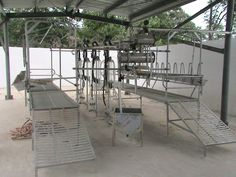 2014 Hot Selling Brand Jade Cattle 32 Goats Milking Equipment For ...