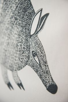Armadillo close up. This beautiful armadillo appears on a design by Walter Oltmann from our Morning Dew (Artist's) Range
