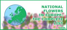 ✿✿✿ Learn about each European country's floral symbol and why it has been chosen. ✿✿✿