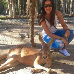 #kangaroo #currumbin #currumbinwildlifesanctuary #australia #aussie #goldcoast #animal #nature #animallovers #animalsofinstagram #instadaily #ig #igers #instagram #instagood #latergram #instapic #instalike #travel #wanderlust #travelgram #instatravel #marsupial by jdubbs79 http://ift.tt/1X9mXhV