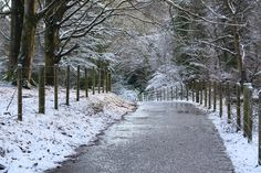 Stunning Photos of #Blessingbourne's walking trails in the #snow #winter