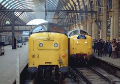 Trackside Classic: 1961 British Rail Class 55 'Deltic' Diesel Locomotive – A Distinctive Roar of Confidence on Britain's Rails Electric Locomotive, Diesel Locomotive, Steam Locomotive, Buses And Trains, Old Trains, Liverpool Street, Electric Train, British Rail, London Transport