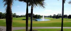 Wynderemere Golf Course in Naples FL is surrounded by single family homes and condos.  The club recently renovated the club house which overlooks a double green.  #naplesgolfcommunities, #naplesgolfhomes, #Napleshomes, #WyndemereHomes, #Naplesgolfguy