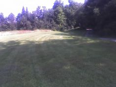 Our pasture