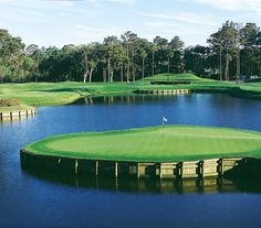 """I have """"donated"""" a few golf balls to the 17th hole at TPC Sawgrass. My favorite hole in golf!"""