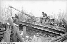 """21 März 1943 Sowjetunion-Mitte.- Panzer VI """"Tiger I"""", davor befestige Stellung oder Panzerhindernis"""