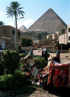 Pirámides de Giza. Poblado de los alrededores  Egipto