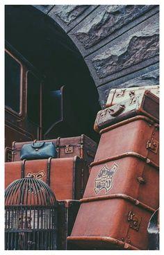 harry potter luggage cake
