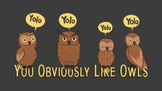 this is so me.... you obviously LOVE owls