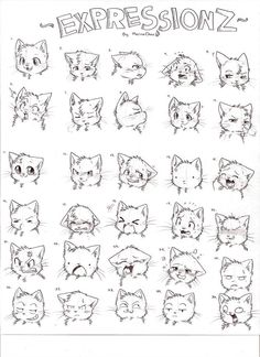 EXPRESSIONZ by Kaotheroogoncreator Cute Animal Drawings, Animal Sketches, Art Sketches, Character Drawing, Character Design, Drawing Cartoon Faces, Cat Anatomy, Cat Doodle, Drawing Expressions