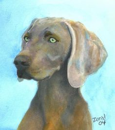 How to draw a weimaraner google search art i like for Weimaraner coloring pages