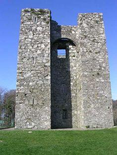 Audley's Castle ►► http://www.castlesworldwide.net/castles-of-ireland/down/audleys-castle.html?i=p