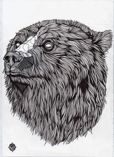 Bears by Luke Dixon, via Behance
