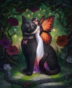 Black cat painting, crafts with pictures, fairy pictures, fantasy fairies, Magical Creatures, Fantasy Creatures, Fairy Pictures, Butterfly Fairy, Fairy Art, Crazy Cats, Faeries, Fantasy Art, Fantasy Fairies
