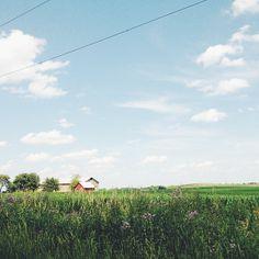Midwest greenery | @designconundrum