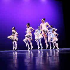 """""""Falco di Luce"""": musica e danza, il 10 novembre al Teatro Filarmonico di Verona.  http://justintimesrl.wordpress.com/2012/10/18/falco-di-luce-musica-e-danza-il-10-novembre-al-teatro-filarmonico-di-verona/"""