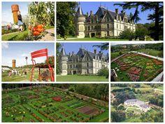 #Château de la Bourdaisière