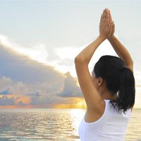 The Yoga of Menopause Alternatives to Hormone Therapy