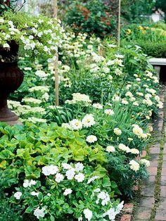 White-Theme Garden Plan