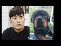 Sung Hoon 성훈 Video by fans THANK YOU. - YouTube