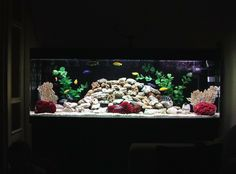 New rock design for my African Cichlid tank.