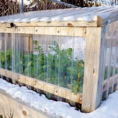 Cold frames offer a simple way to protect plants from frost, but take care to vent these season extension devices to avoid overheating your plants on sunny days.