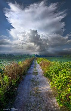 """The Only Way In"" Wisconsin Horizons By Phil Koch...."