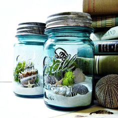 Upcycled Mason Jar Terrarium / Antique Blue Ball Mason Jar / Wedding Table Decor / Air Plant / DIY Terrarium Kit