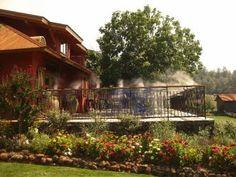 Beautiful Winery and Vineyard in Redding California http://www.anselmovineyards.com