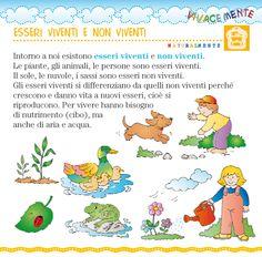 Ciao bambini: Gli esseri viventi e non viventi Schede didattiche ...
