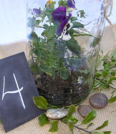 DR Ideas:  Pickle Jar centerpiece with small plant inside and greens and river rocks around the outside base.  Construction paper with chalked table number.