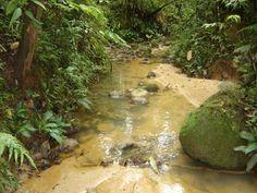 Vía al llano  Venta de Finca  Guamal- Meta  Cel. 3144204021 País - Colombia