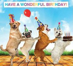 HAVE A WONDERFUL BIRTHDAY Birthday Qoutes Happy Wishes Dog Meme