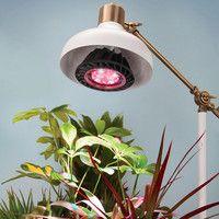 Hammacher Schlemmer - Early Spring Supplement 2016 - The Spectrum Optimized LED Grow Light.