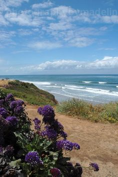Power plant beach in Carlsbad - Seascapes of Southern California