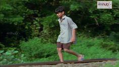 Thaniye parakkunna pakshi- G venugopal