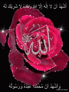 لا إله إلا الله وحده لا شريك له له الملك و له الحمد و هو على كل شيء قدير