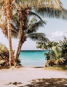 5 Reasons To Visit Peanut Island In West Palm Beach Florida - Beach Life Bliss - Coastal Lifestyle & AirBnb Hosting West Palm Beach Florida, Florida Beaches, Florida Sunshine, Hawaii Beach, Kauai Hawaii, Hawaii Pictures, Beach Pictures, Pictures Images, The Beach